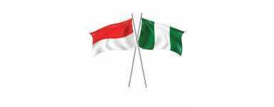 Impression drapeau personnalisé